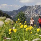 Wandern im Tannheimer Tal - ©Tourismusverband Tannheimer Tal