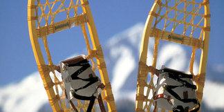 Sanfte Erholung und volle Vitalität: Regeneratives Schneeschuhwandern im Kleinwalsertal