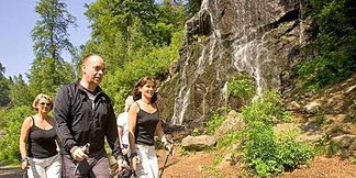 Nordic Walking in Bad Harzburg - ©Stadtmarketing Bad Harzburg