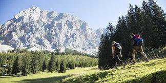 Fünf Wandertipps für schöne Almwanderungen in Tirol - ©Tirol Werbung