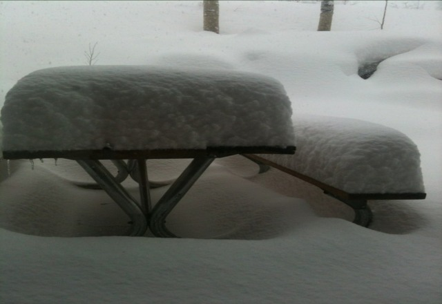 A pic from a patio at the base. earn your turns!! larkspur was not steep enough.