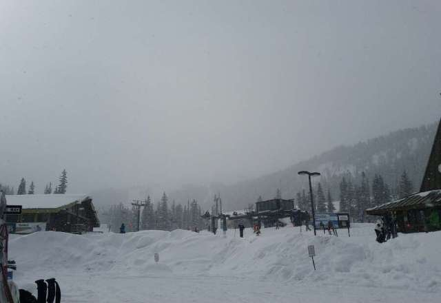 I went out yesterday..beautiful!  7+ powder when I arrived and it just kept coming. Reports this morning said another 8