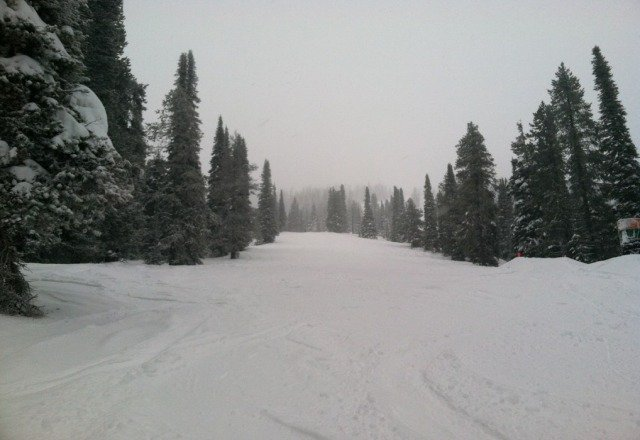 Heavier POW and more every minute.  Lots of clean tracks.  Yesterday was the lightest powder on the planet.