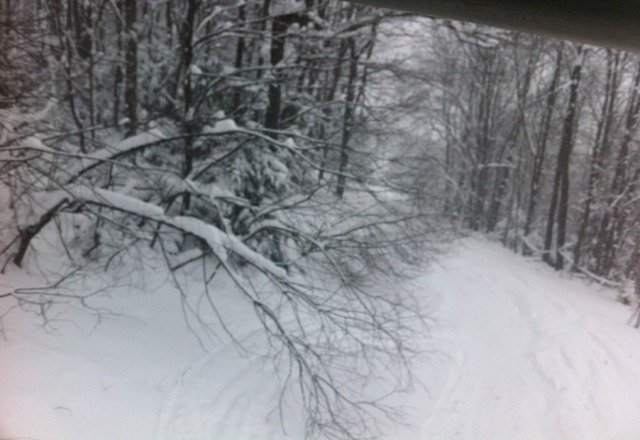epic conditions for wisp! it was dumping all day