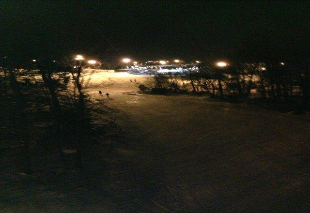 blue is looking fiiiiine. ran twilight great snow and empty!