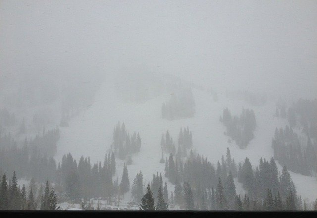 good powder today and tomorrow