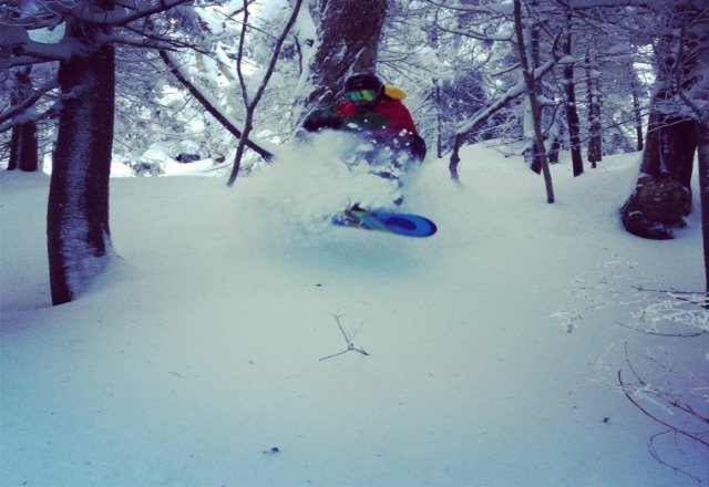 deep powder in the glades and it's not even january.!