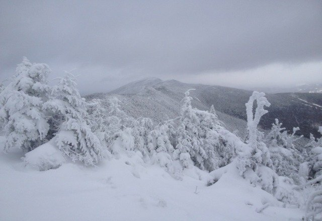 please stop complaining about totals, it's VT in december and there is a ridiculous of powder if u go look for it! yes there were multiple feet at the bush!