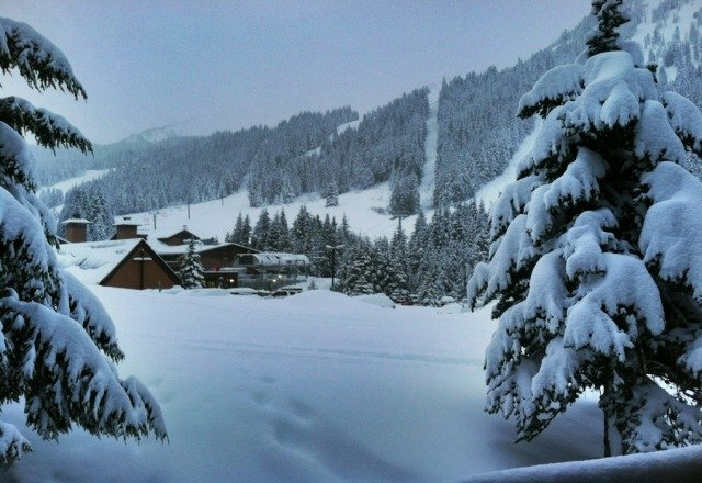 12 inches of new snow at least! today is going to be an epic day!