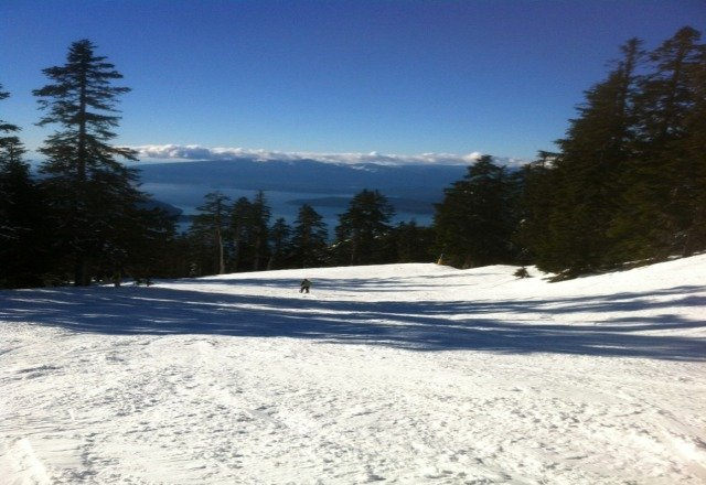New snow on upper half of mountain... made for some good skiing.
