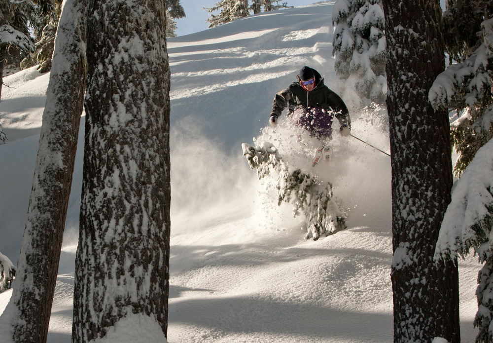 Powder in the trees at Timberline Lodge. Photo courtesy of Timberline Lodge.