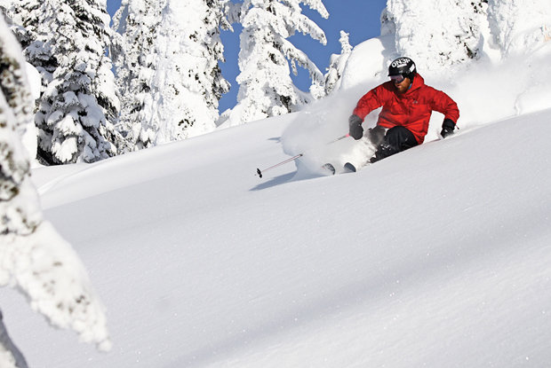 A skier sinks into power in the trees at Whitefish Mountain Resort.