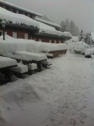 40 cm New snow