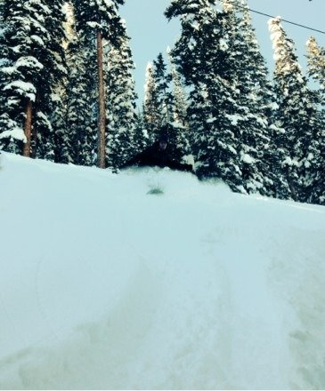 Steep and deep today.  Lachlan playing Sasquatch.