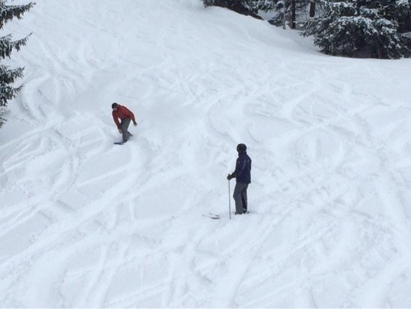 Fresh powder, 100 percent open. Conditions are at their peak!  THE SKI KING