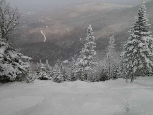 def not nearly two feet of freshies like ski report claims last three days but gnar pow pow nonetheless. nice pic here of Doc Dempseys Woods. new fav mt for me and DNoodles