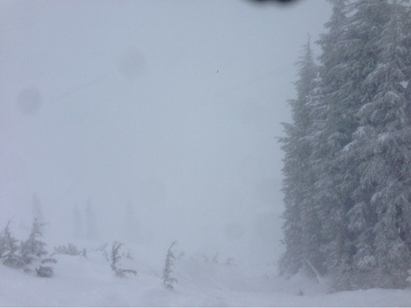 Awesome definitely the best mountain this weekend. Rode both squaw and alpine today. Squaw only has 2 lifts