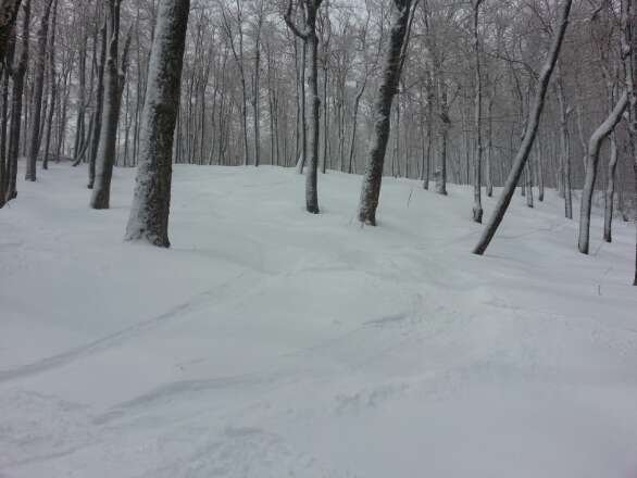 epic gnar, really cold but worth it. snowed all day and was a little windy.