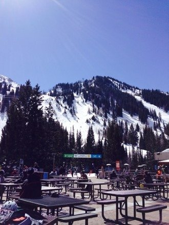 Great bluebird day here at Snowbird.