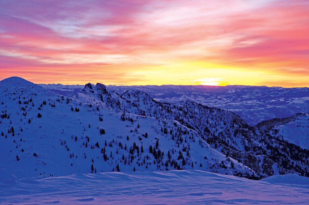 Snowbird beauty. - ©Snowbird Ski and Summer Resort
