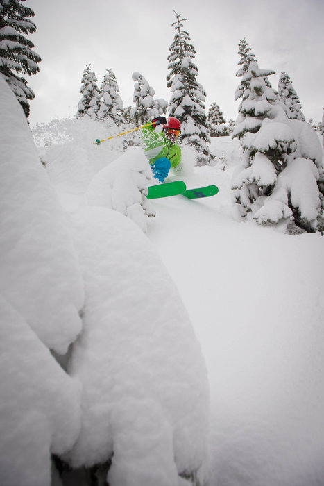 Powder and tree skiing at Squaw Valley. - ©Jeff Engerbretson