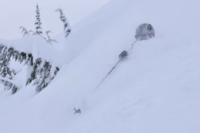 Powder Skiing near Revelstoke - ©Mike Saemisch-Brian Head - Utah | snowhunter @ Skiinfo Lounge