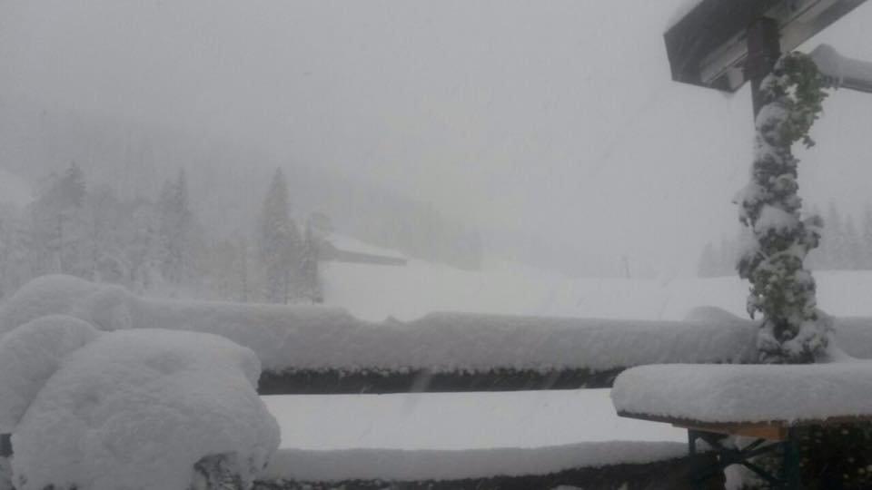 In Balderschwang schneite es mehr als 20cm (Neuschnee 22./23.10.2014)