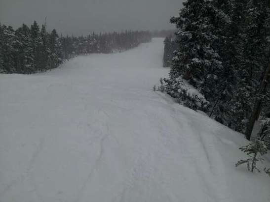 snow has been falling all morning. still plenty of powder In the woods. wInd Isnt that bad