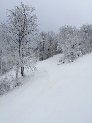 Today had amazing conditions Super Chief and 7 were running great grooming / just foggy on top