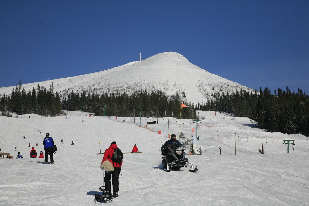 Lofsdalen