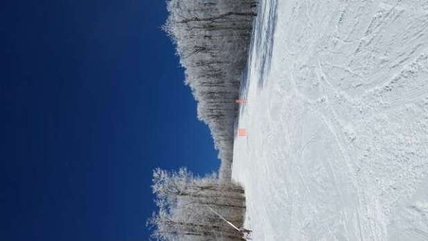 Beautiful conditions, great new snow!