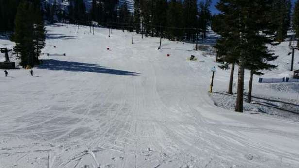 groomed runs are great, non groomed are very icy. better coverage then most resorts in N. CA that I've been to. They are making snow but coverage can get thin in some spots especially later in the day.