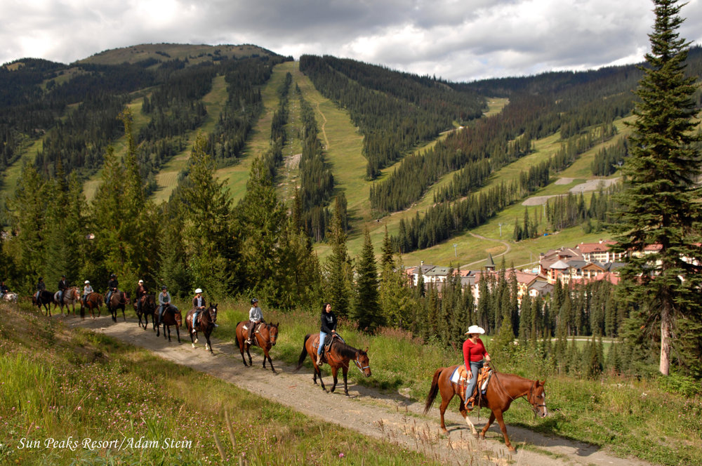 Horseback riding lesson along dirt track in Sun Peaks