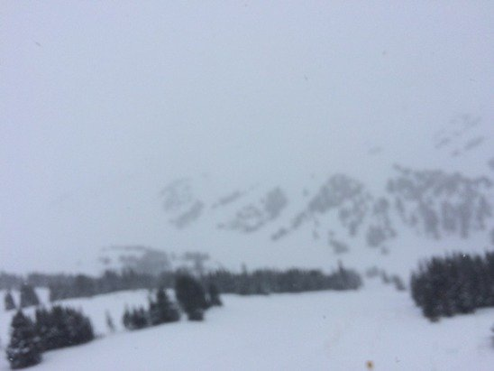 Excellent day for powder!