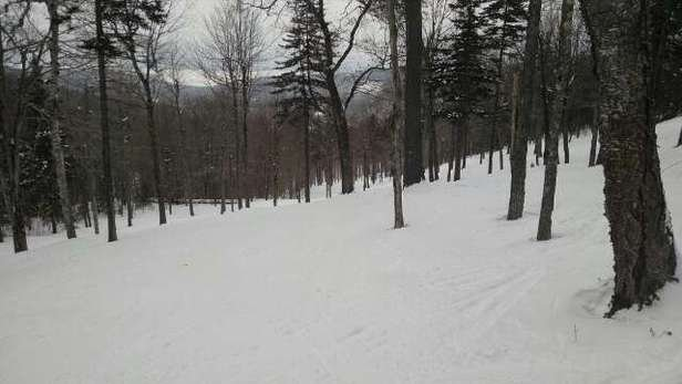 Great conditions today.  Lots of powder.  Glades in great condition.  Awesome day today.