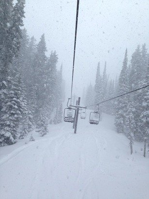 About 8 inches of new powder in some icy runs.  Tons of fun!