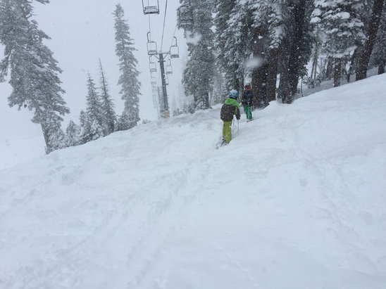 Epic powder day! No one there. Amazing conditions. Freshies all day long