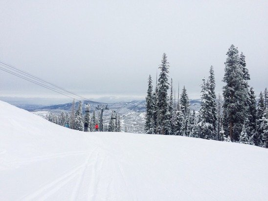 better than it was this winter and more freshies on the way!