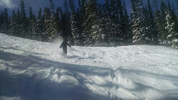 Snowy Range Ski & Recreation Area - Awesome powder! Never skied in this much before!  - ©sk