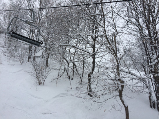 Liberty - Today was the best ski day I have ever had east of the Mississippi.  The powder at Liberty was AMAZING. At least 10