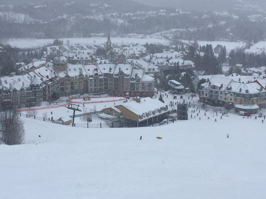 Tremblant - Snowed all day. Minimal ice. Great snow. Conditions were excellent though very foggy with poor visibility up top.