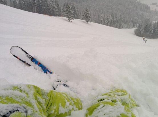 Vrátna - Powder everywhere today. 20cm on piste, 30cm off piste. - ©Peter