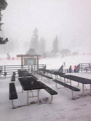 Alpine Meadows - Dumping!  But it's the last day so waaa waaa waaa