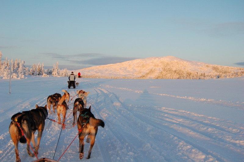Edsåsdalen - ©Sweden Nature Experience | mountainfellow @ Skiinfo Lounge