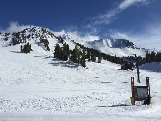 Mammoth Mountain Ski Area - Awesome powder day today and no one was here. At least a foot, maybe more at high elevations.  Top did not open today, but looks like it will be great tomorrow morning. Winter not gone quite yet