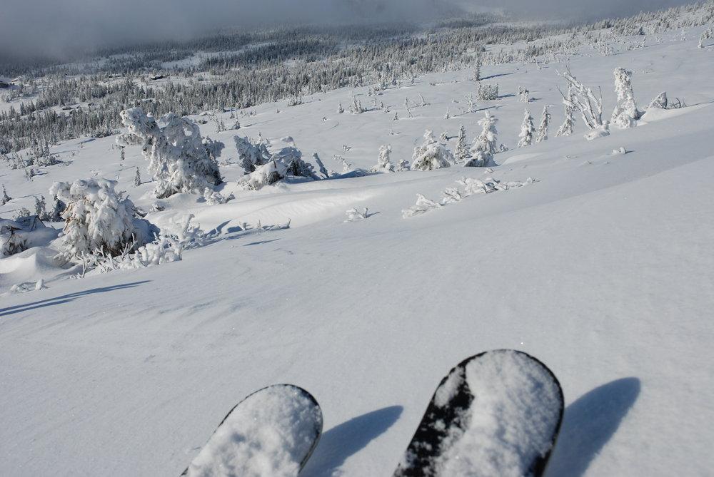 Norefjell - ©Speedliff @ Skiinfo Lounge