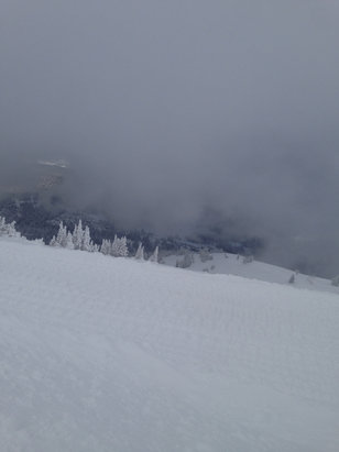 Grand Targhee Resort - Big hike butyl most   knee deep pow pow   - ©woody's iPhone
