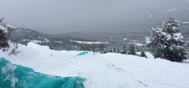Lake Louise - Bring your snowshoes. Waist deep powder! Epic conditions !  - ©shredhead