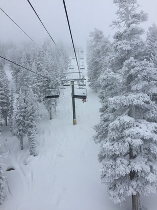 Heavenly Mountain Resort - Lots of new fluffy snow today!!! - ©iPhone