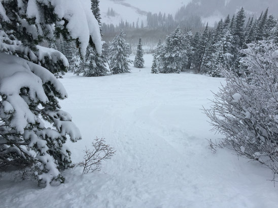Grand Targhee Resort - Plenty of pow - ©iPhone